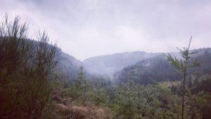 La Chouffe Trail 2020 BE